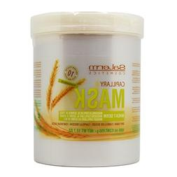 Salerm Cosmetics WHEAT GERM Capillary Mask, Provitamins B5 f